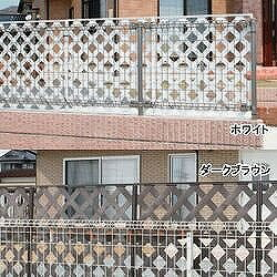 【アイリスオーヤマ】 目隠しプララティス ホワイト ≪PLM-830≫