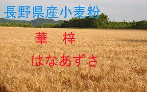 華梓2.5kg 長野県産小麦であるハナマンテン、ゆめかおりを原料にしています。加工なし。