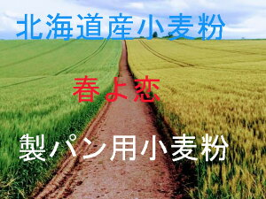 春よ恋 25kg 北海道産小麦として高い評価を受けている「春よ恋」を100%使用した強力小麦粉です。株式会社 増田製粉所100% 強力粉 加工なし。吸水率が高く、内麦特有のもちもちした食感