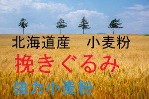 春よ恋 挽ぐるみ 25kg 人気の北海道産小麦春よ恋をロングで挽砕した事によりコストパフォーマンスを高めたお得な小麦粉。パン、ピッツァ生地、全粒粉やレーズンを練り込むバラエティブレ