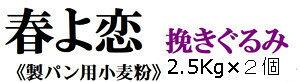 強力粉 春よ恋 挽ぐるみ 2.5Kg×2個 計5kg 北海道産小麦として高い評価を受けている「春よ恋」を100%使用した強力小麦粉です。送料無料
