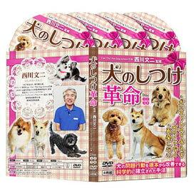 犬のしつけ革命〜科学的に確立された犬の問題行動を改善する方法〜【犬のエキスパート 西川文二 指導】DVD