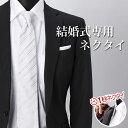 Necktie 0634