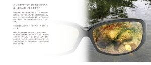 【送料無料】TIEMCO(ティムコ)サイトマスター/SightMaster【ミセラブラック】【偏光サングラス】