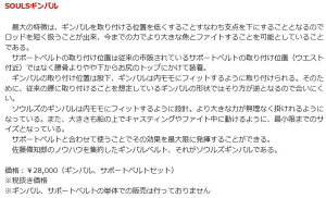 【送料無料】ソウルズSOULSギンバル【ギンバル、サポートベルトセット】