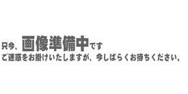 Tom Crown GEMINI ストレートミュート ブラスエンド【トランペット用】