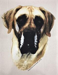 グレートデーン グレートデン (R-2)デングッズ 傘 65cm 直径110cm レディース メンズ 男女兼用 雨傘 かわいい おしゃれ 梅雨 レイングッズ UVカット 風に強い 耐風 犬柄 いぬ 犬グッズ 犬プリン