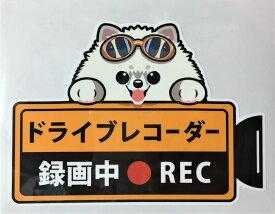 ドライブレコーダー録画中・犬種別外張りステッカー(ポメラニアン2)ドラレコ ステッカー ドッグ 犬 イヌ いぬ 車 オーナーグッズ あおり運転 迷惑防止 ポメ