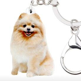 ポメラニアン キーホルダー ポメグッズ アクリル 犬 いぬ イヌ dog 犬種別 犬雑貨 オーナーグッズ かわいい 輸入 キーチェーン プリント