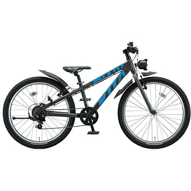 ブリヂストン BWX ストリート BXS076 ガンメタリック/ブルー 20インチ ジュニアバイク【2016年モデル】【完全組立済自転車】