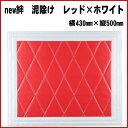 New-kizuna-r-430-500