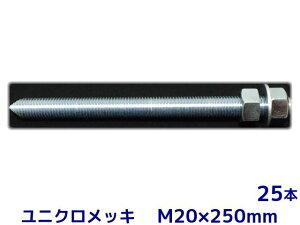 ケミカル アンカーボルト セット ユニクロメッキ M20×250mm 25本 寸切ボルト1本 ナット2個 ワッシャー1個 Vカット 両面カット【取寄せ品】