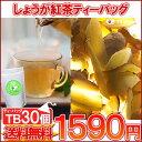 【ティーバッグ】「しょうが紅茶TB30個入り」送料無料!【フルーツTB】【メール便:送料無料】