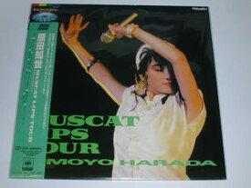 (LD:レーザーディスク)原田知世/MUSCAT LIPS TOUR(マスカット・リップス・ツアー)【中古】