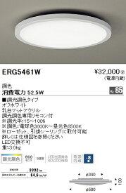 ERG5461W 遠藤照明 照明器具 STYLISH LEDZシリーズ LEDシーリングライト 調光・調色タイプ 【〜8畳】
