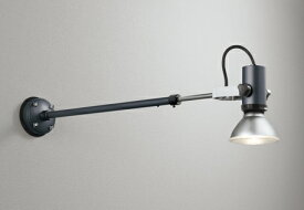 OG044118エクステリア LEDスポットライト 灯具のみ アーム伸縮LED電球ビーム球形対応 非調光 防雨型オーデリック 照明器具 アウトドアライト
