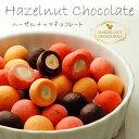 【選べるヘーゼルナッツチョコレート120g】お試し