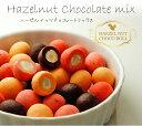 ※7月25日以降出荷※ヘーゼルナッツチョコレートミックスたっぷり4種類が400g入り