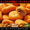 【賞味期限近い為、売り切りSALE】【大容量ピーカンナッツ600g】一度食べたら止まらない!ピーカンナッツをたっぷり堪能!