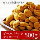 【大容量ピーカンナッツ500g】一度食べたら止まらない!ピーカンナッツをたっぷり堪能!ホワイトデー