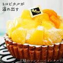 王様のマンゴー&パインタルト】フルーツたっぷり高級ホテルのタルト!パイナップルとマンゴーがぎっしり!【スイーツ…