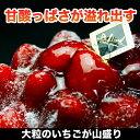 キュンとする甘酸っぱさ大粒いちごたっぷり女神様のストロベリータルト【いちごのタルト】