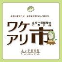 【訳あり・在庫処分】鈴なりリンゴコンパクトアップル【2品種セット】品種は店長にお任せ!!