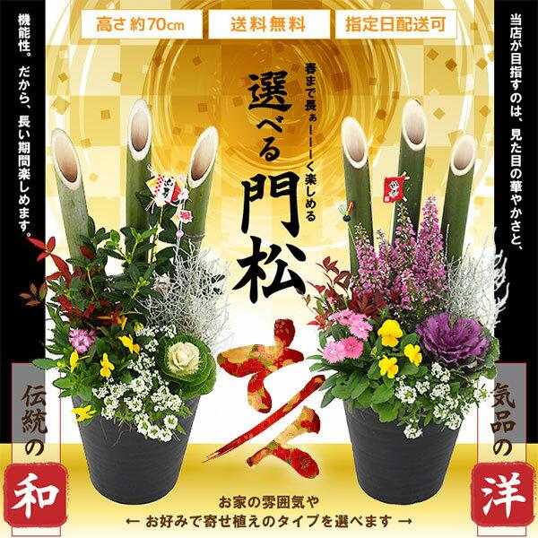 2個セット(1対) 【選べるタイプ】門松アレンジ 寄せ植え 高さ約70cm 7号鉢植え 【 送料無料 】