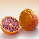 【楽天スーパーSALE 半額商品!】ブラッドオレンジ 『 タロッコ 』 13.5cmポット接木苗 【 珍種 】