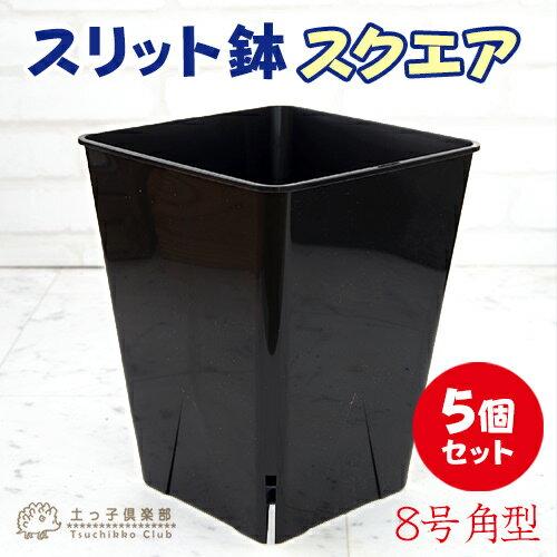 のびのび育つ 『 スリット鉢 スクエア 』 8号角型【5個セット】