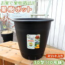 植木鉢 『 果樹ポット 』 10号鉢 ( 30型 ・ 黒 ・ スリット入り )