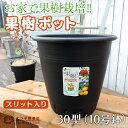 植木鉢 『果樹ポット』10号鉢(30型・黒・スリット入り)