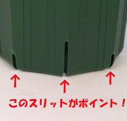 のびのび育つ【スリット鉢】24cm(8号)