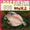 駿河湾産えぼ鯛(中)