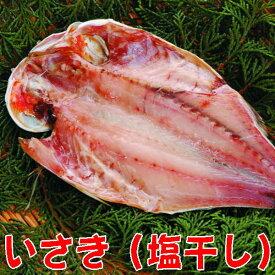 【受注生産】いさき干物(イサキ塩干し開き)沼津無添加地魚産地直送