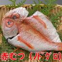 【受注生産ノドグロ】赤むつ干物(アカムツ塩干し開き)沼津無添加地魚産地直送