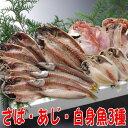 【送料無料】沼津干物セット(天日干しひもの詰め合わせ)お魚健康セット(さば塩干し)