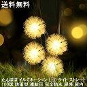 【送料無料】たんぽぽ 毛玉 イルミネーション LEDライト ストレート 100球 防雨型 連結可 完全防水 屋外用 屋内用 電…