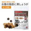 お腹の脂肪に黒しょうが[機能性表示食品]30粒/30日分 ブラックジンシャー 黒生姜 ダイエット サプリメント 脂肪燃焼 …