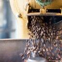スペシャルティコーヒー豆ボリビア プマプンク農園200gティピカ フルウォッシュドスペシャルティコーヒー バイオラテ…