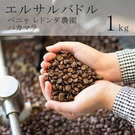 スペシャルティコーヒー豆エルサルバドルパカマラ1kg(200g×5袋)ペニャ・レドンダ農園ウォッシュド[スペシャルティコーヒーエルサルバドルマイクロロット]送料無料