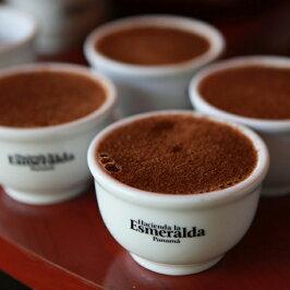 パナマエスメラルダ農園品評会2018年ESN9-1ゲイシャナチュラル100gトップオブトップスペシャルティコーヒー豆限定