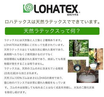 【送料無料】《敷きパッド/トッパー》敷くだけ!LOHATEX高反発ラテックス敷きパッド(厚さ2.5cm)マットレス/ファスナー付アウトカバー/取り外し・洗濯可能/シングル100×200×2.5cm