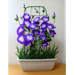 【個人様購入可能】●送料無料 【朝顔プランター】造花 あさがお アサガオ プランター 91623