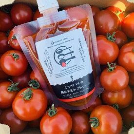月星食品(株) ソースデリシリーズ とちぎトマトの贅沢デミトマトソース 200g デミグラスソース 絶品 栃木県産トマトを贅沢に使用