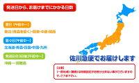 えび海老エビロシア産「ぼたん海老」ボタンエビ特大2Lサイズメス限定500g(8〜9尾)