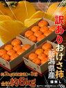 柿 かき 新潟県産 訳あり おけさ柿 簡易包装 約2kg (9玉前後)×3箱 ご自宅用 送料無料
