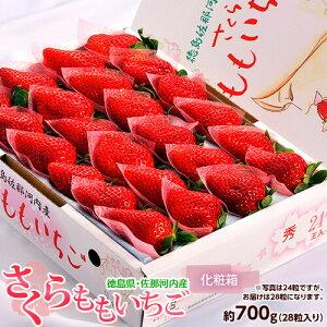 いちご イチゴ 苺 ギフト 徳島県佐那河内産 さくらももいちご 化粧箱 28粒 約700g 送料無料 ※冷蔵 送料無料
