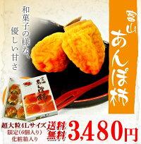 柿カキかき富山産あんぽ柿超大粒4Lサイズ6玉入630g化粧箱送料無料常温