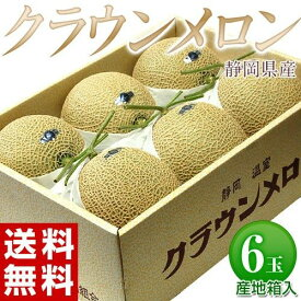 静岡県産「クラウンメロン」 小玉 6玉 産地箱 白等級以上 約6kg ※常温 送料無料